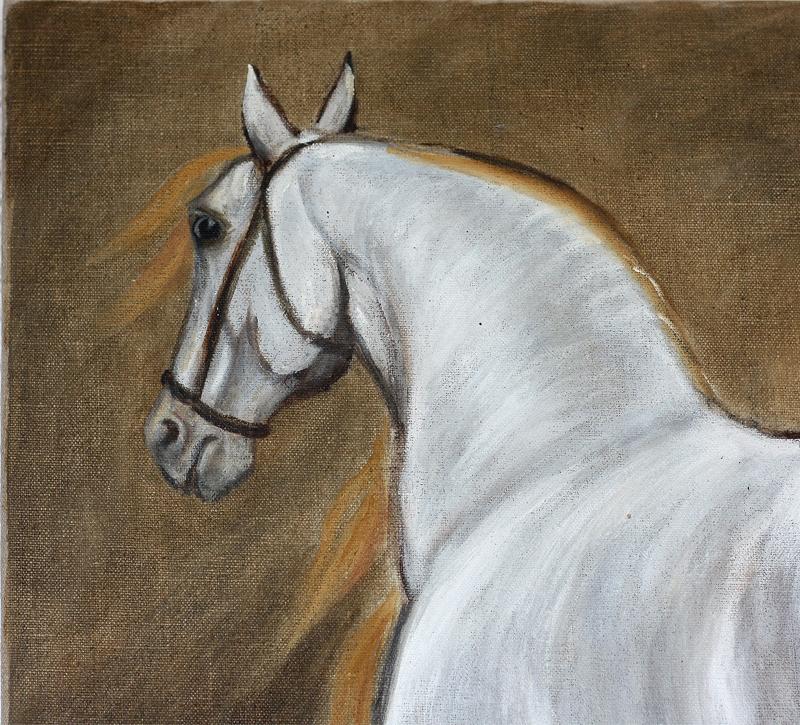 Cheval blanc - huile sur toile